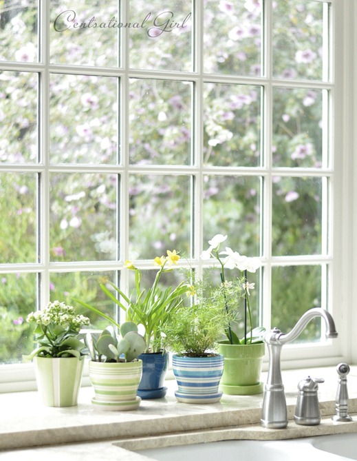 jeld wen bay window cg