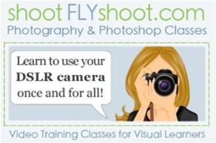 shoot fly shoot button