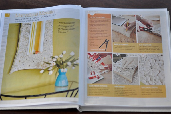 diy project book