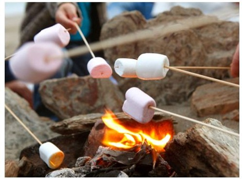 marshmallows on stick