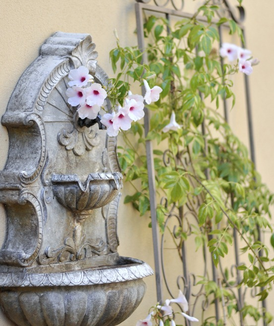 bower vine on wall fountain