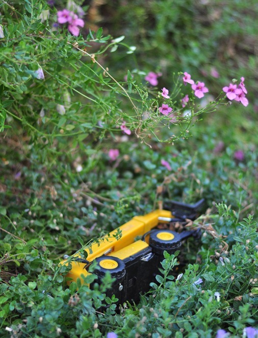 toy truck in garden