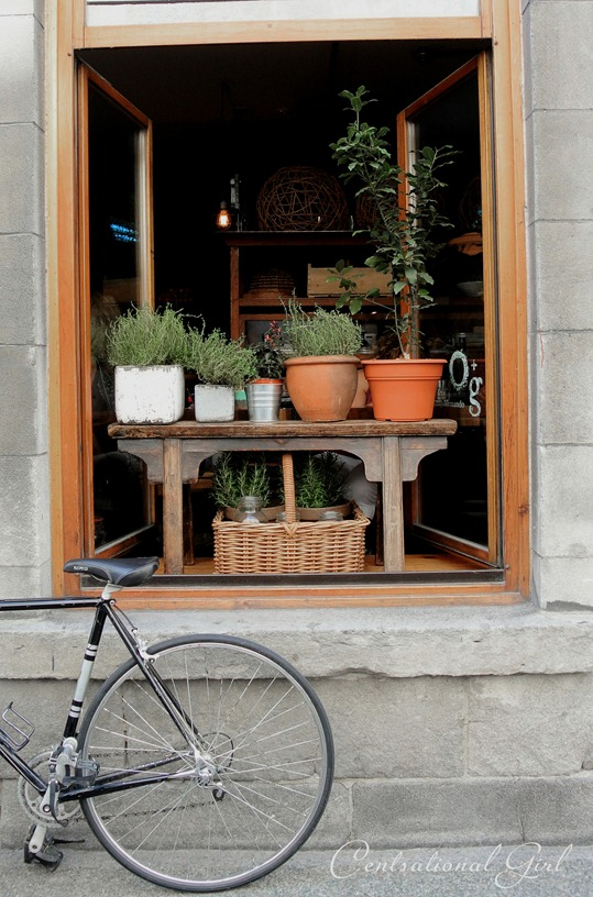 montreal window with bicycle cg