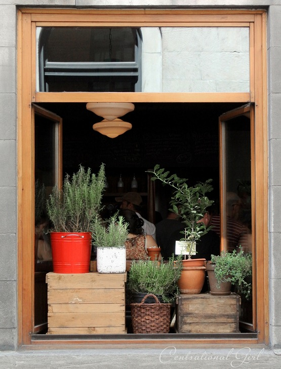 old montreal window botanicals cg