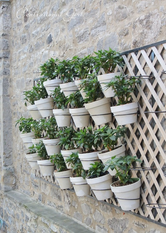 pots on stone wall cg