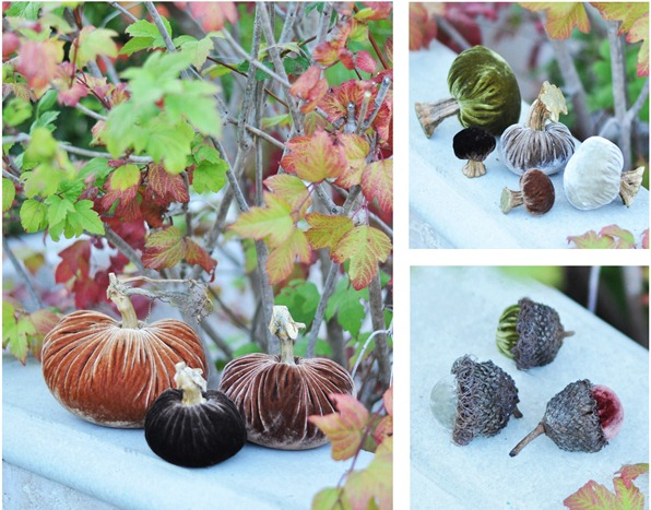 velvet pumpkins acorns mushrooms