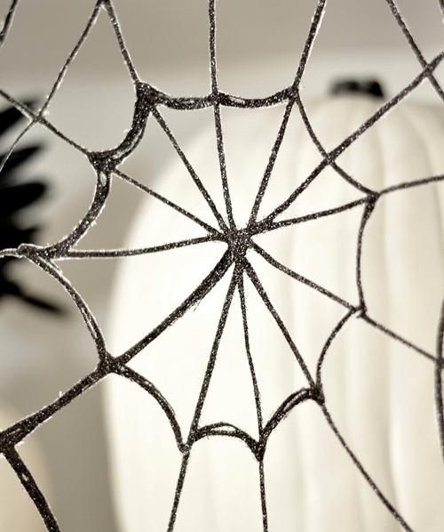 web close up