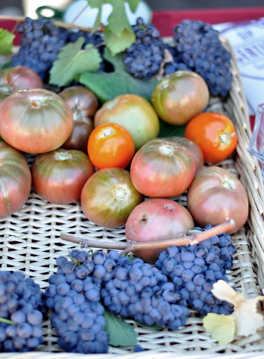 wine grapes and tomatoes