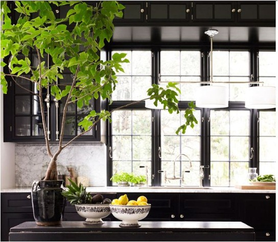 black mullion windows