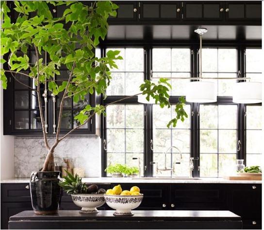 Wood Mullions For Windows : Black mullion windows