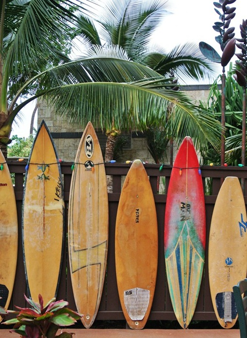 surfboards-on-fence
