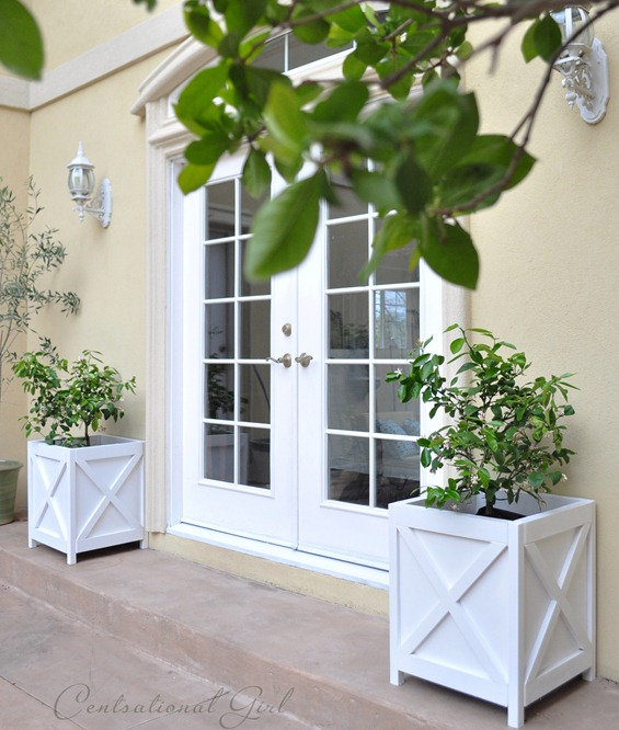 french doors and planters