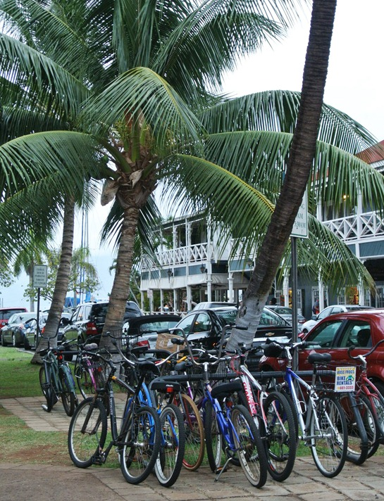 lahaina bicycles