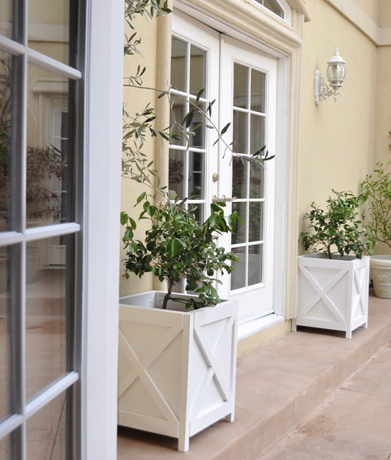 planters view from kitchen
