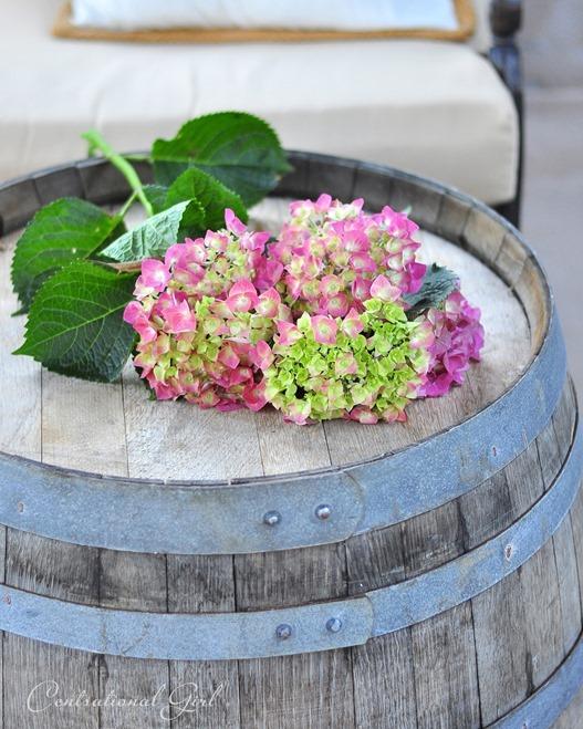 hydrangeas on wine barrel cg