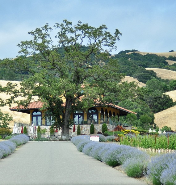 hanna estate winery