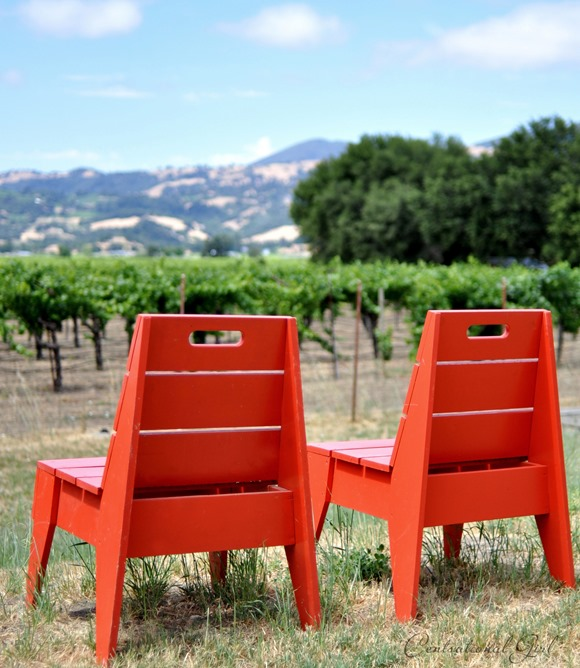 red chairs looking over vineyard