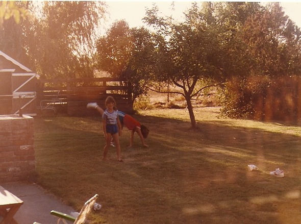 shed and apple tree