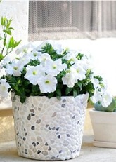 rock covered bucket