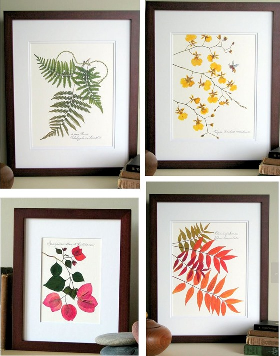 pressed leaf prints flat flower designs