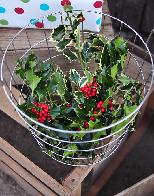 basket of holly