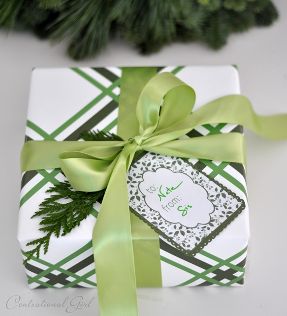 green ribbons gift wrap
