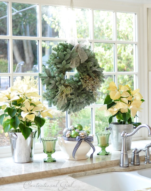 poinsettias and wreath in window
