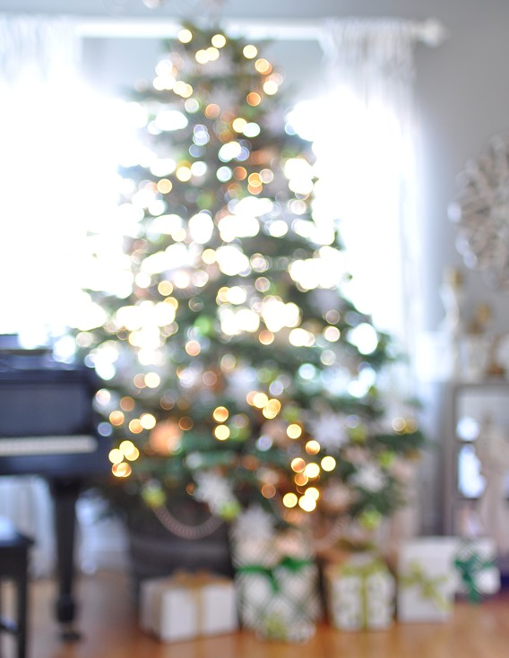 christmas tree capturing bokeh centsational girl. Black Bedroom Furniture Sets. Home Design Ideas