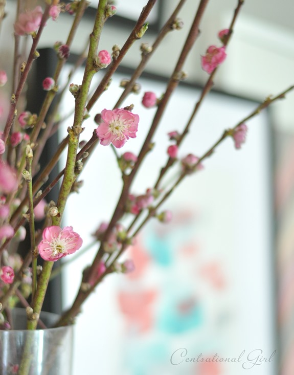blossoming branches cg