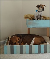 palet dog bed