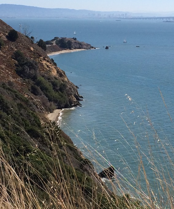 angel island coastline
