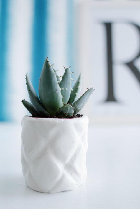 diy pineapple planter