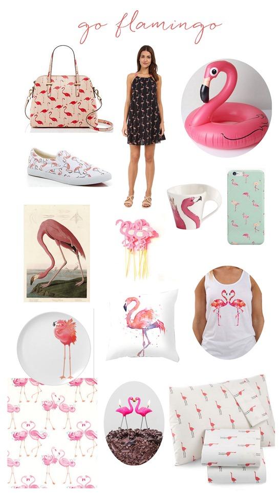 flamingo finds