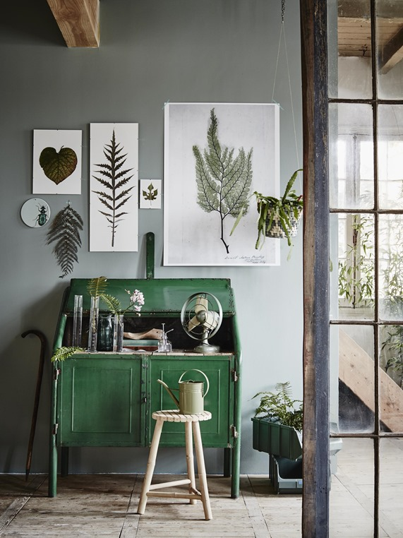 botanical leaf art print display