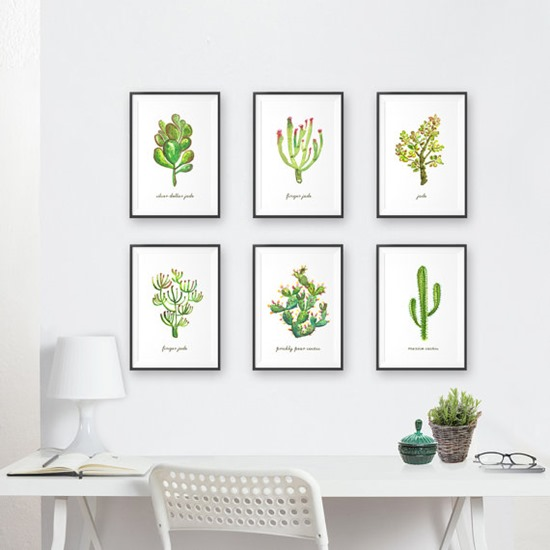 cactus and succulent art