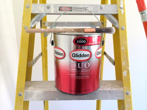 duo paint and primer