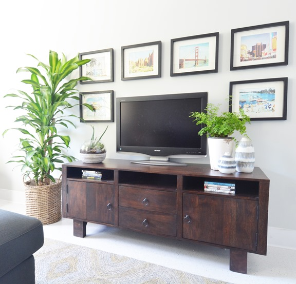 media stand framed pictures around tv