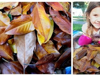 golden magnolia leaves