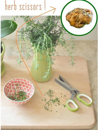 herb scissors for roasting