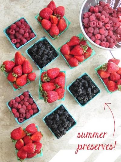 summer preserves ingredients