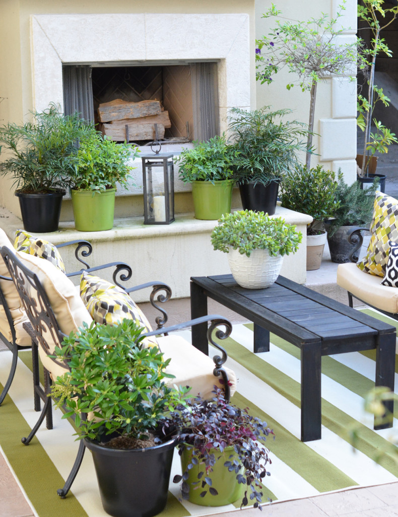 outdoor fireplace plantings