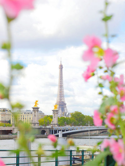eiffel tower flower frame