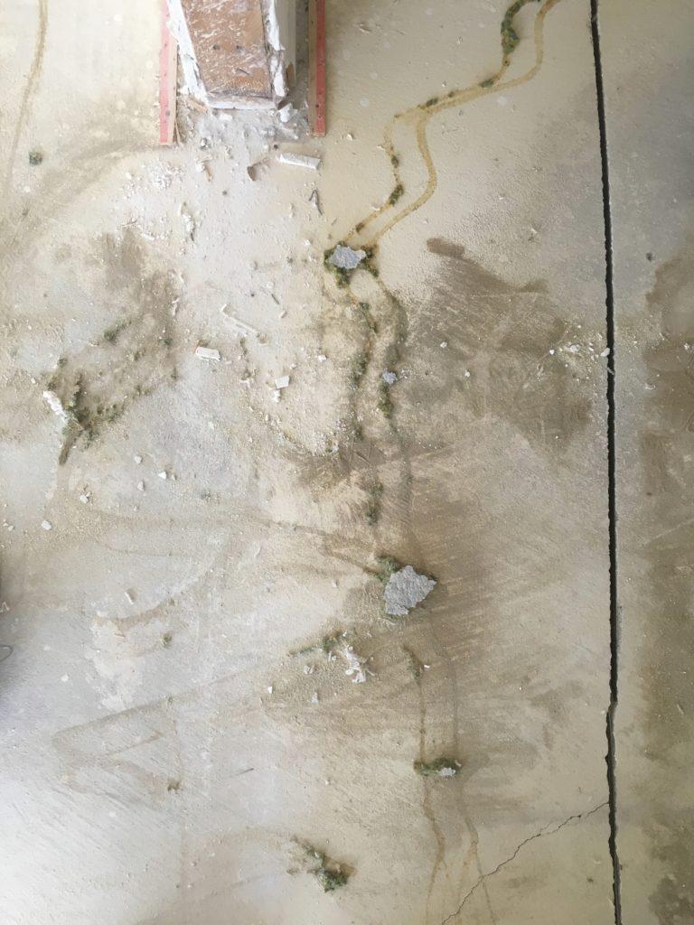 leftover glue cracks