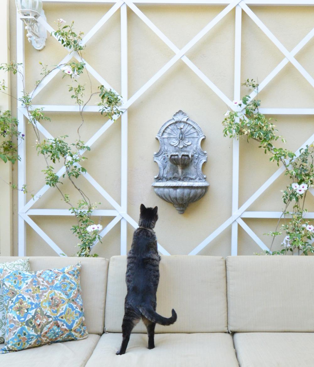 Centsational Style: DIY Criss Cross Wall Trellis