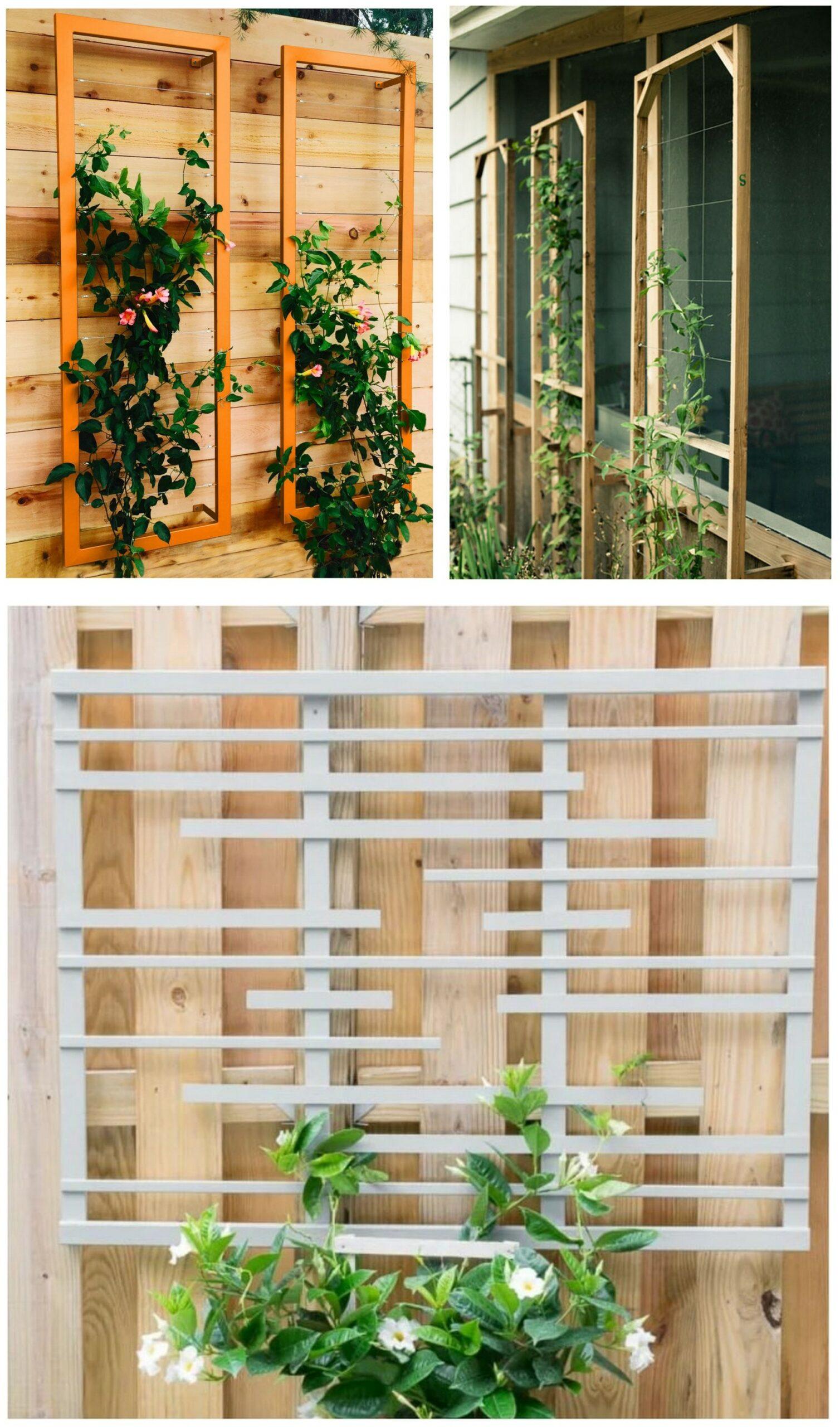 Modern DIY Trellis Designs  Centsational Style